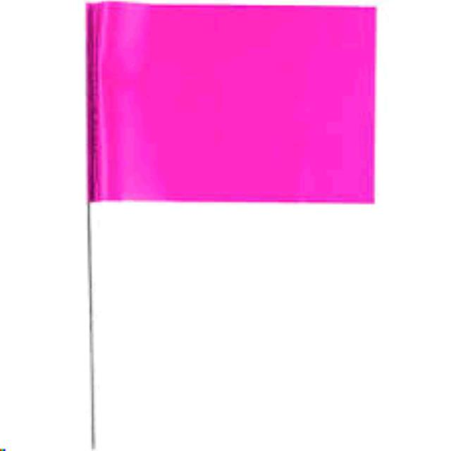 Where to find 21  Glo PNK Stake Flag in Grove