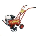 Where to rent TILLER, FRONT TINE 5 HP in Grove OK