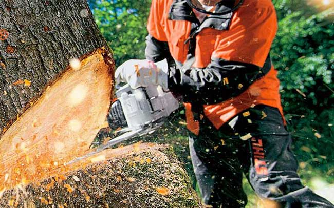 Buy Stihl Tools in Northeast Oklahoma & Southwest Missouri
